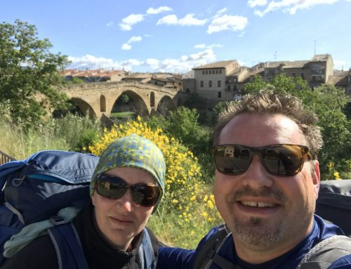 20 Reasons why you should also walk the 800km Camino Frances